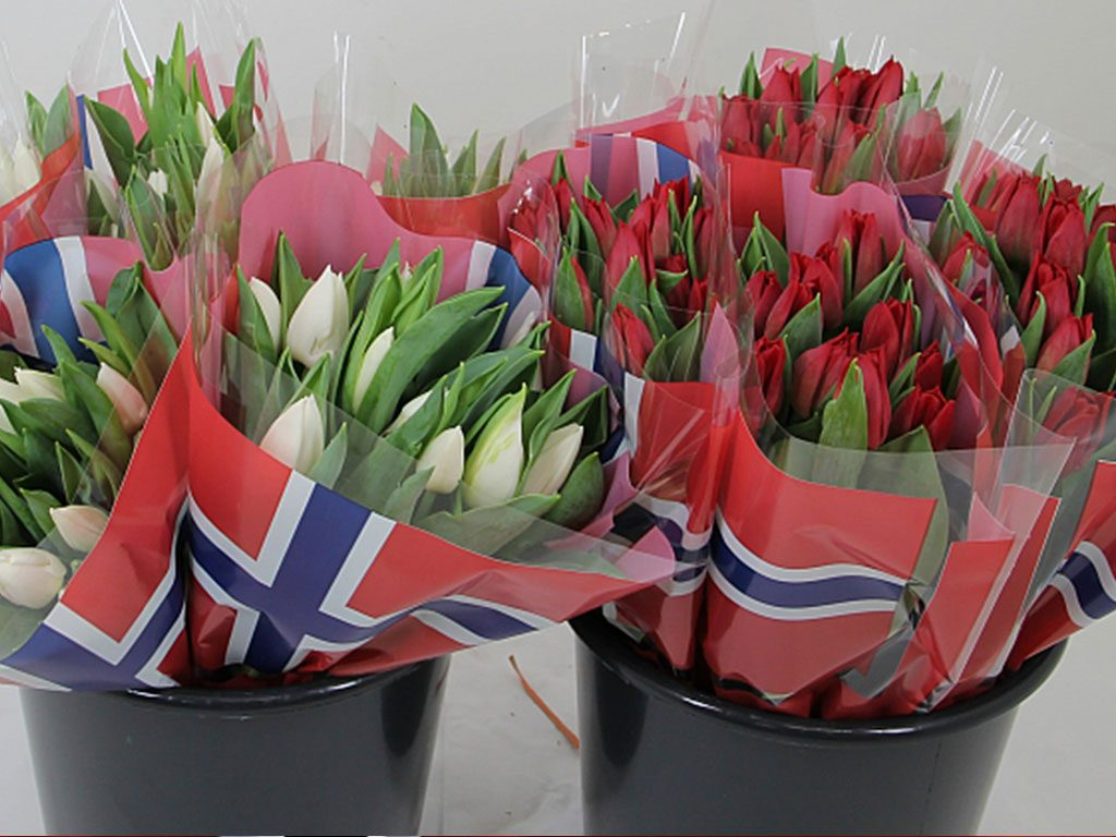 hilverda-norge-flowers